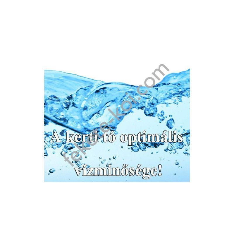 A kerti tó optimális vízminősége!