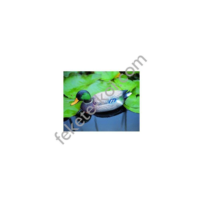 Úszó vadkacsa hím 40 cm élethű madár figura (csalimadár)