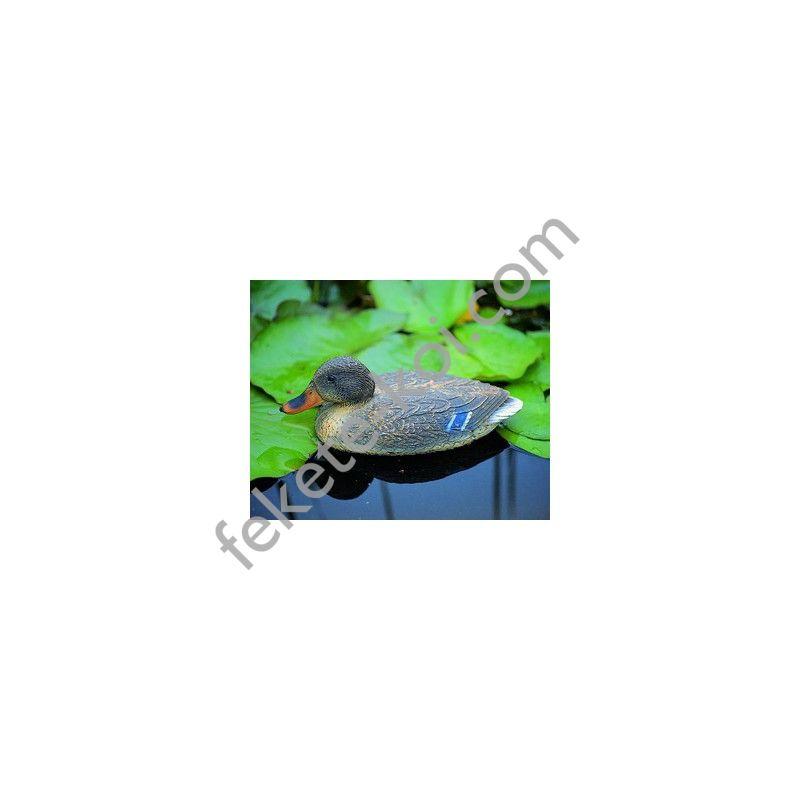 Úszó vadkacsa nőstény 40 cm élethű madár figura (csalimadár)