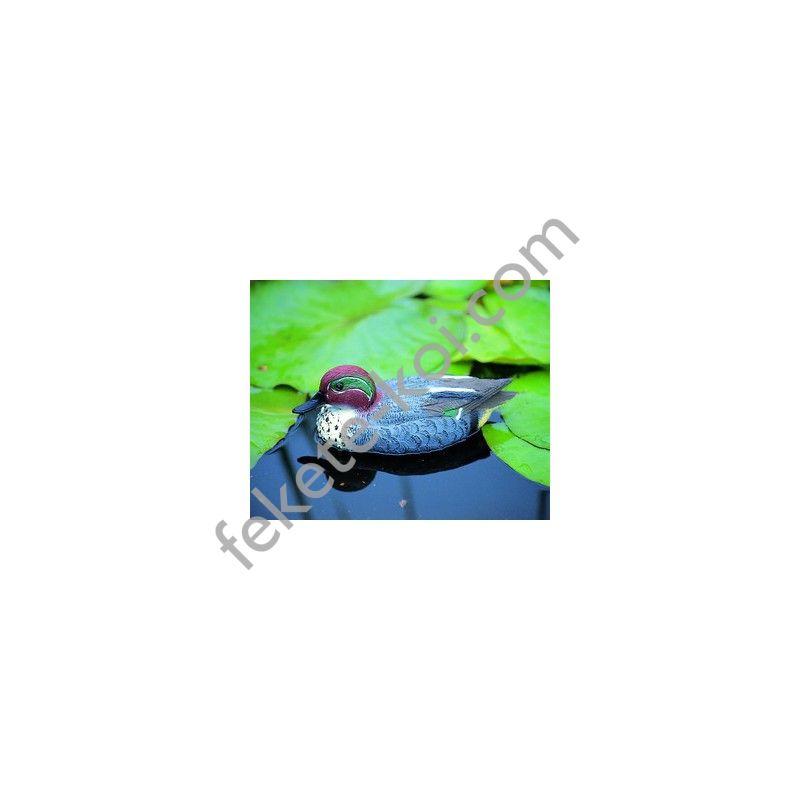 Úszó réce hím, 31 cm - Élethű madár figura - csalimadár
