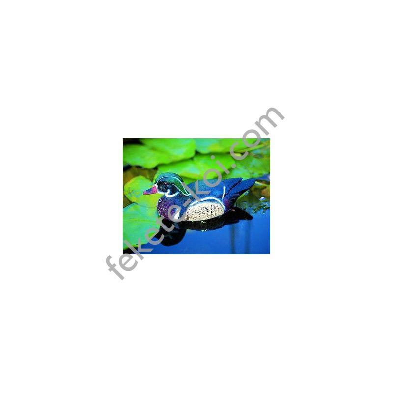 Úszó Carolina kacsa hím 30cm- Élethű madár figura - (csalimadár)