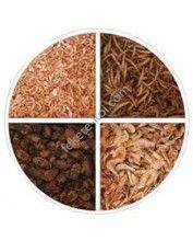 Szárított lárva mix (selyemhernyó, lisztkukac, garnéla, gammarus) 200Gramm