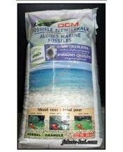 DCM növény tápsó