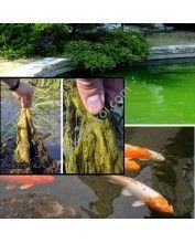 Bio algex fonalas algairtó és tófertőtlenítő 0,5Kg (25 m3 vízhez)