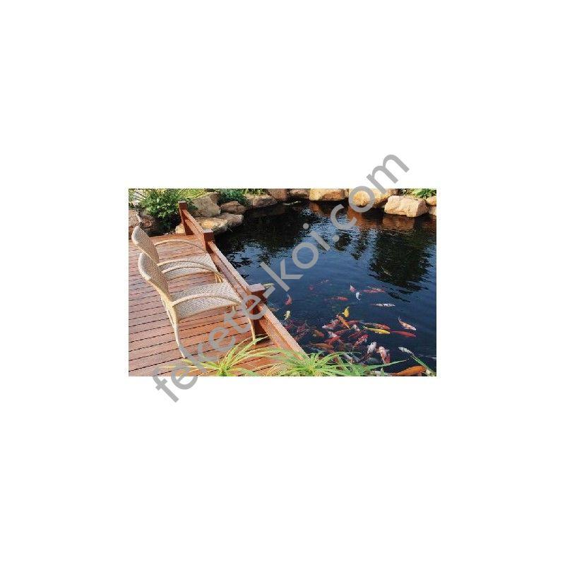 Kerti tó, fürdő tó építés