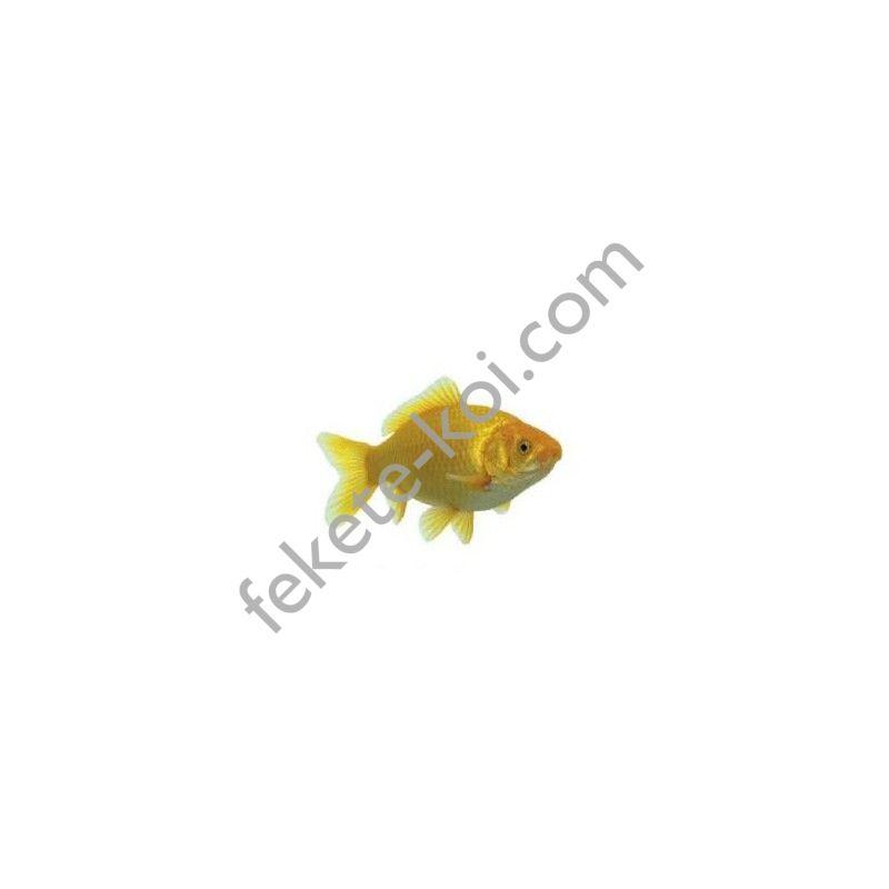Tavi aranyhal sárga 4-7cm