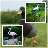 Élethű műanyag madarak madár riasztók